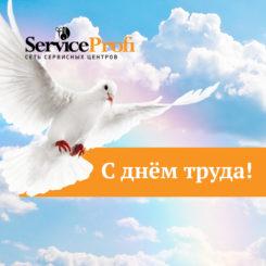 s_dnem_truda_service-profi_2018_2